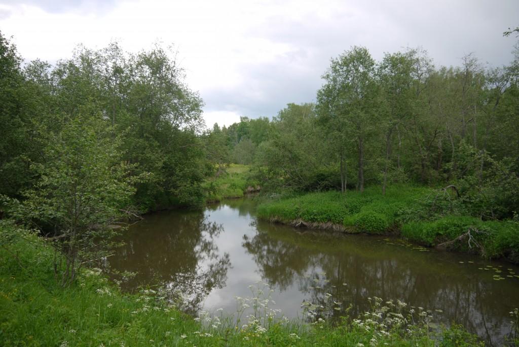 в округе пасеки находится река Покаша