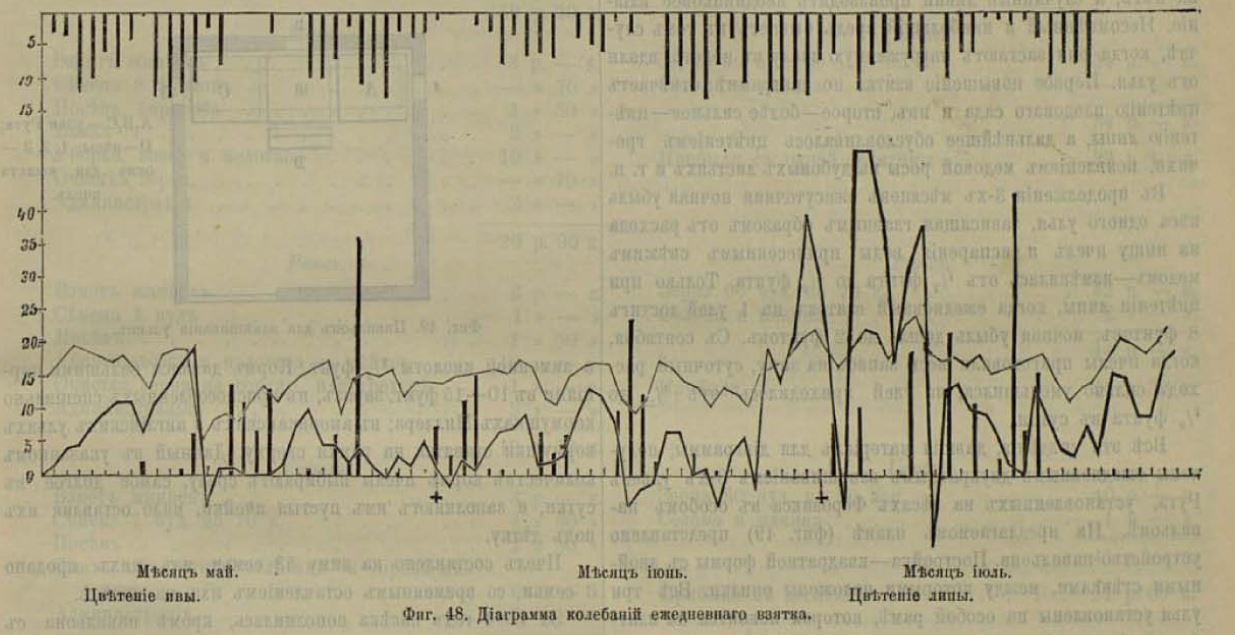 диаграмма взятка